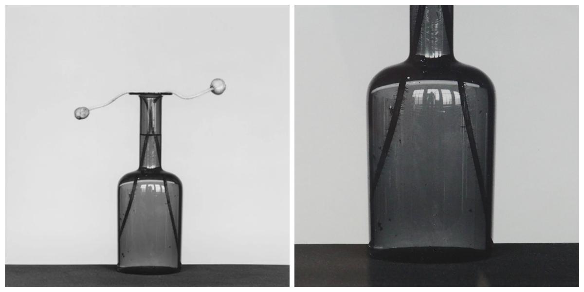 Poppy, 1982, de Robert Mapplehtorpey detalle ampliadoen que se ve al fotógrafo.